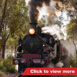 Twilight Trains Gallery - Train